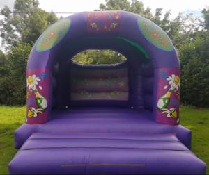 Adult Party Bouncy Castle